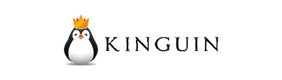 kinguin-discount-code